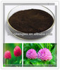2014 Free Samples red clover extract,red clover extract powder