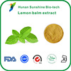 5% 30% Rosmarinic acid HPLC,Melissa officinalis.,lemon balm extract