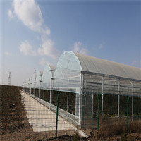 PE Polyethylene or polythene Agriculture Plastic Film Greenhouse Film