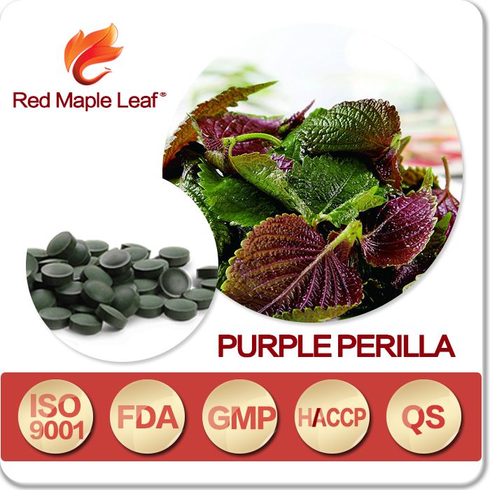 Natural Purple Perilla Seed Oil Capsules, Tablets, Softgels, pills, supplement - Manufacturer, Price, OEM, Private Label