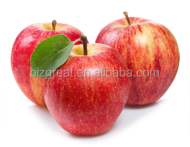 Fresh fruits Red star apple with good quality for sale