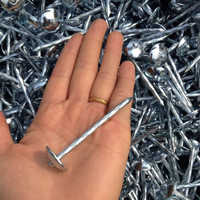 BWG9 BWG10 export to Africa and Myanmar Indonesia e-galvanized umbrella head ROOFING NAILS