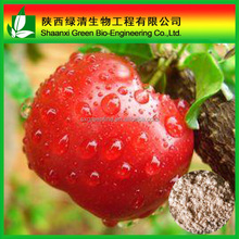 Apple Skin Extract Powder
