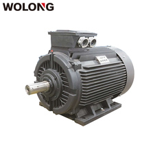WOLONG YE3 18.5KW 25HP 4P Three phase asynchronous Induction AC motor for air compressor
