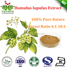 high quality humulus lupulus hops extract