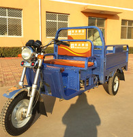 2016 newest High quality petrol truck cargo tricycle with van with good price
