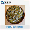 Hot Sale Pure Natural Buchu Leaf Extract Powder,Buchu Leaf Extract by China supplier