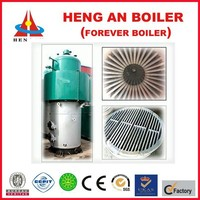 factory price trade assurance CE SGS BV industrial coal fired boiler for home