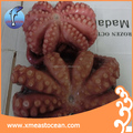 frozen cooked octopus whole round