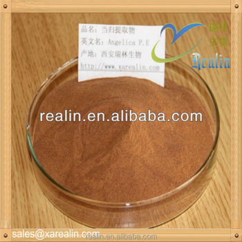 100% natural Angelica extract , Dong Quai extract