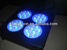 Cynthia 48*3W LED Reef Aquarium Light For Coral