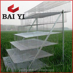Quail Farm Welede Wire Mesh A Frame Quail Layer Cages for Sale