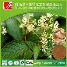 Manufacturer Supply Tripterygium Wilfordii