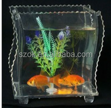 beautiful clear acrylic fish tank with insert photo frame