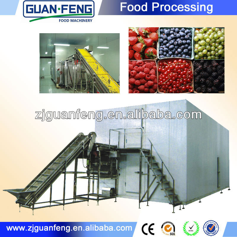 fluidized quick freese machine and commoncial quick freezer industrial blast freezer iqf pineapple dices