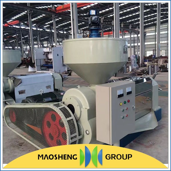 Professional Walnut oil press machine