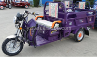 cargo electric tricycle auto rickshaw