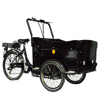 Electric cargo bicycle new electric cargo rickshaw