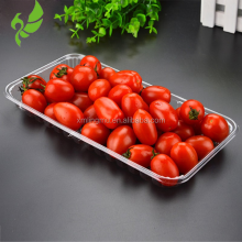 disposable tray fruit container plastic wholesale PET for sale different size