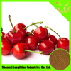 GMP Manufacturer Supply High Quality Acerola Cherry Extract with Pure Vitamin C