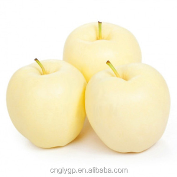 Bulk Fresh apple fruit wholesale prices late model apple