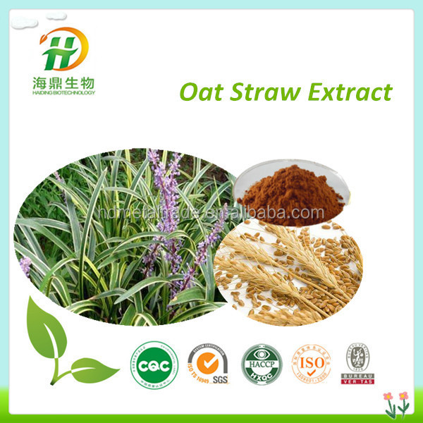Manufacturer offer Natural oat straw extract