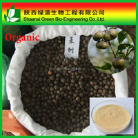 Green Tea Seed Extract Saponin 90%,98% HPLC