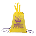 Promotional silk screen printing non woven drawstring bag with carry handle