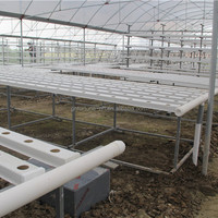 Commercial Agriculture Hydroponic Nft Growing Systems