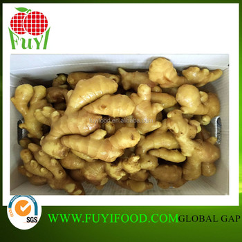 Chinese New Year Fresh Ginger With Competitive Price