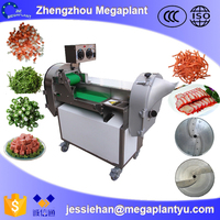 hotsale industrial dried fruit and vegetable cutter machine for sale