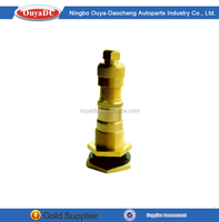 Custom Tire Valve Tire Accessories Tire Valves , Universal Car Tire Valves