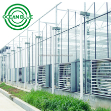 China low cost industrial commercial agricultural greenhouse for sale