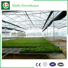 Plastic Sheet Agricultural Multi-Apan Film Greenhouse for Flower Growing