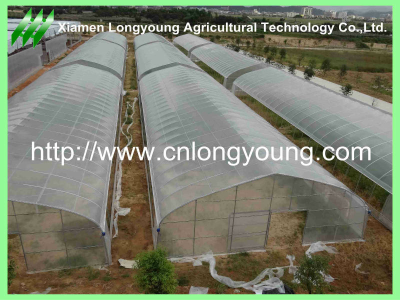 2014 Model Film Cover Greenhouse For Vegetable