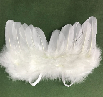 Feather Angel wing for Party Costumes and wedding