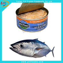 Fresh seafood canned tuna in oil