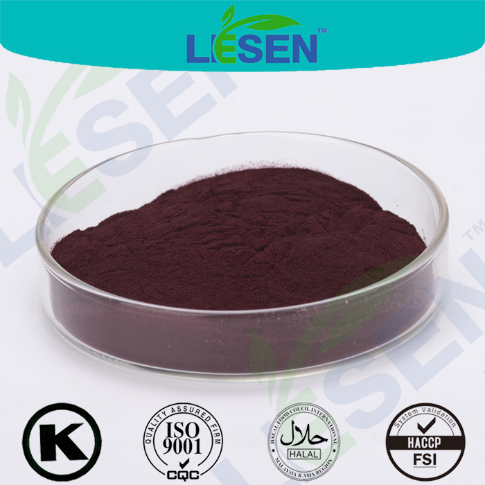 100% Natural Bilberry Extract/ Blueberry Extract/ Anthocyanidins/ Fruit Powder