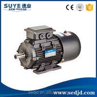 YE2/Y2 Copper Wire 100% Three/Single Phase Asynchronous AC Electric Motor