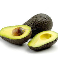 hot sale high quality avocado price