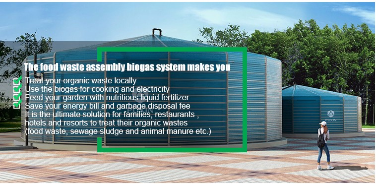 Cooking Fuel Application new small size biogas plant