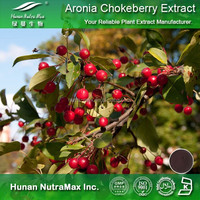 Halal & Kosher Aronia Chokeberry Extract Powder,Aronia chokeberry P.E.