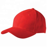 Cheap 100% cotton or polyester 6 panel baseball cap fitted embroidery or printing logo hat