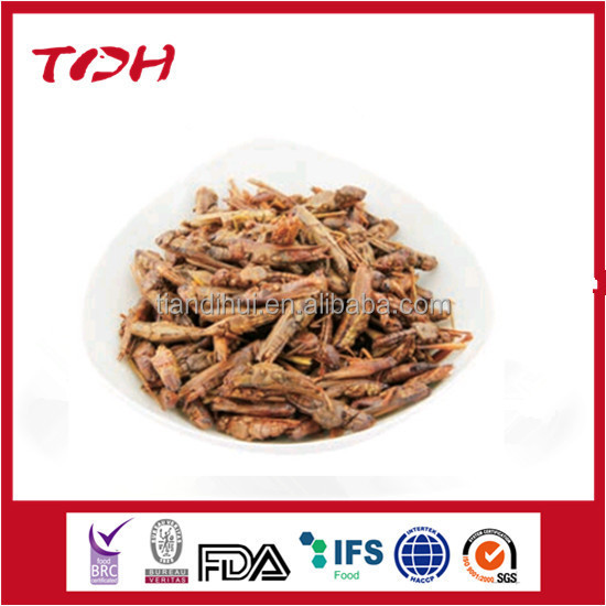 Dried grasshopper natural cat food OEM cat snacks factory