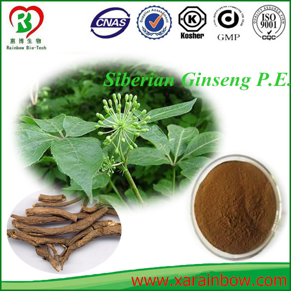 100% pure siberian pine seed oil New design factory top your own brand packaging