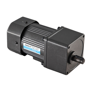 high torque induction AC 110v 220v 15w low rpm ac gear electric reversible motor