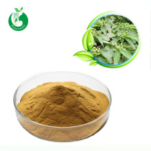 Fresh Hawthorn Berry Leaf Extract Powder 80% Howthorn Flavone