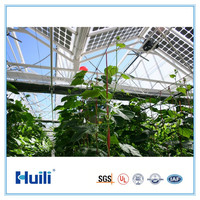 4/6/8/10mm greenhouse polycarbonate sheets, polycarbonate twin wall sheet