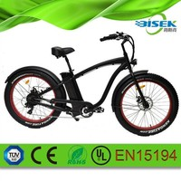 high speed electric bicycle eec electric cruiser bike for men