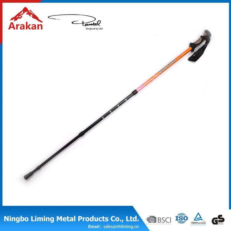 New Design factory directly bamboo cane pole walking stick